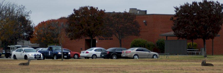 Allstate Insurance Agency Steven J. Toman Agency,Spring, TX